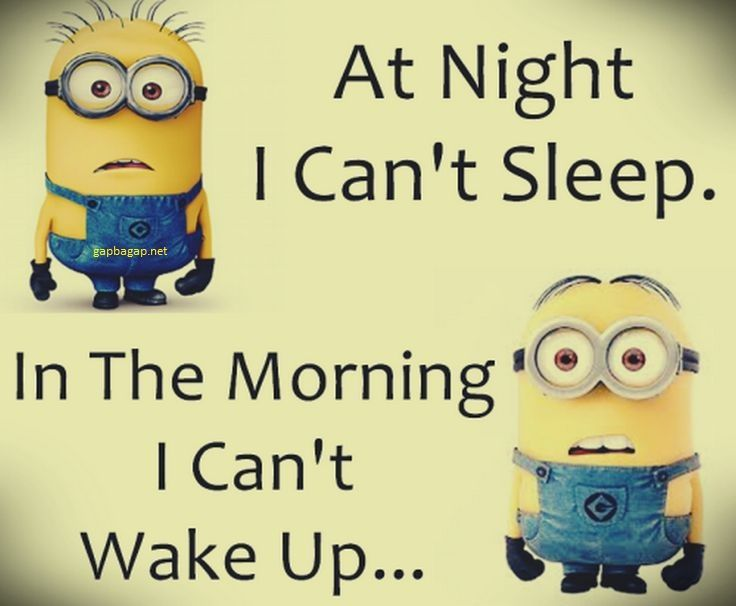 Funny Minion Jokes About Night Vs Morning Funny Funny