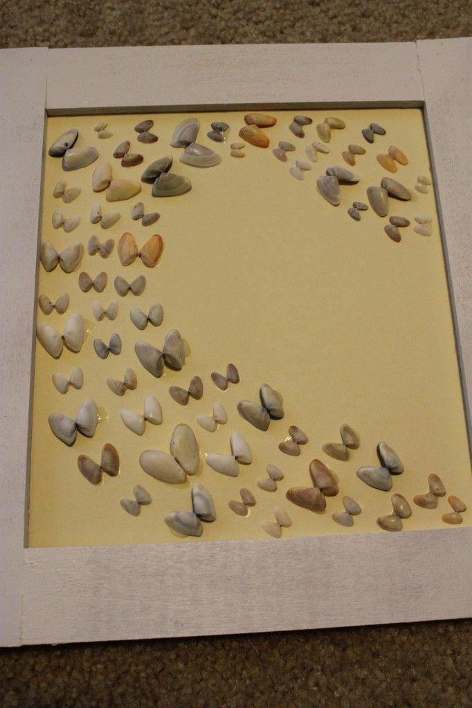 3 Ways to Frame & Display Sea Shells!