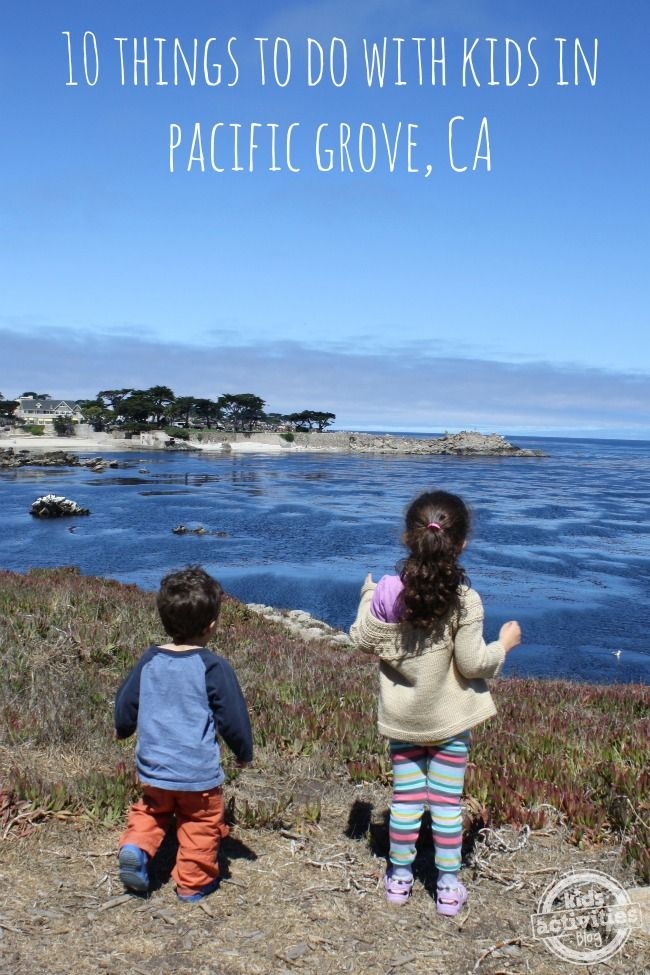 10 Things to Do with Kids in Pacific Grove, California #familytravel