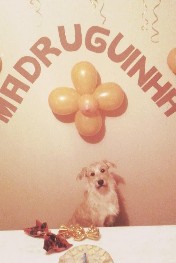 Madruguinha ganhou presentes de aniversário…   O aniversário do Madruguinha é o álbum de fotos que você precisa ver hoje