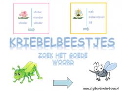 Kriebelbeestjes: zoe