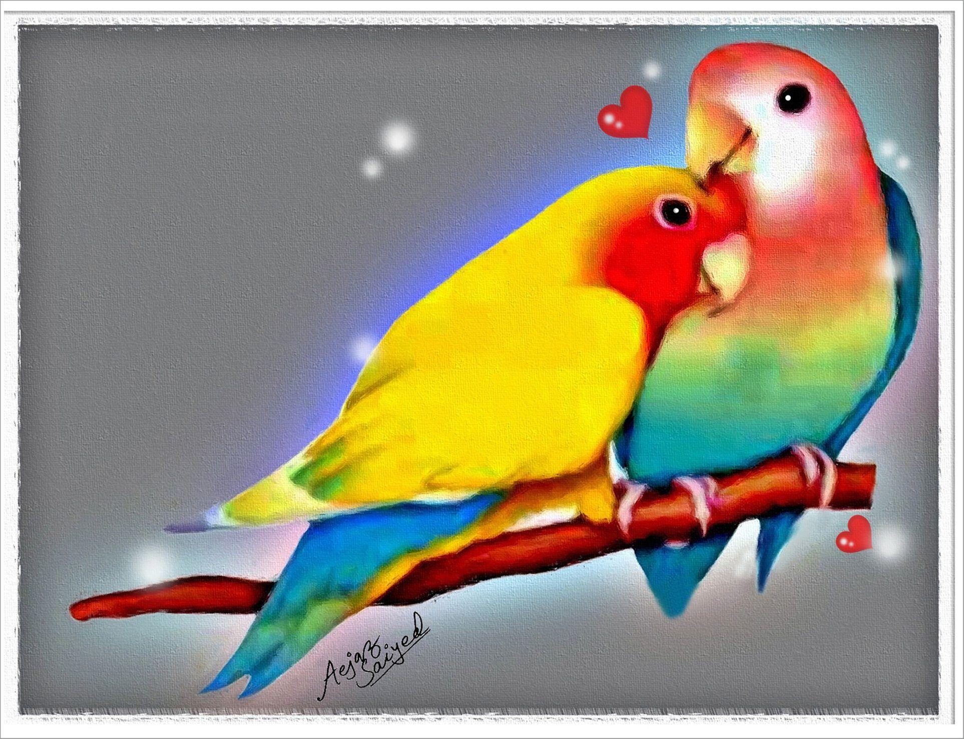 Love Bird Quotes Pictures Of Love Birds  Digital Painting Of Love Birds