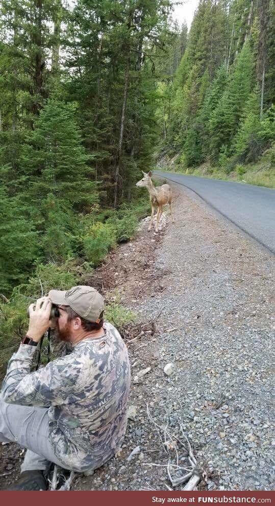 Oh deer - FunSubstance