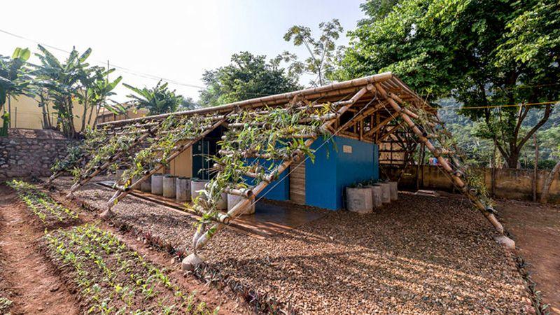 ไอเดย สรางหองนำโรงเรยนประถม ราคาประหยด พรอมสวนผกแนวตง แกไขปญหานำในเวยดนาม Bamboo Structure Bamboo House Design Farm Shed