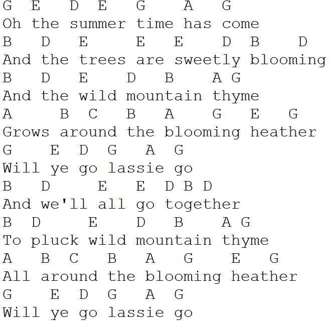 Wild Mountain Thyme Tin Whistle Tinwhistleflute Pinterest