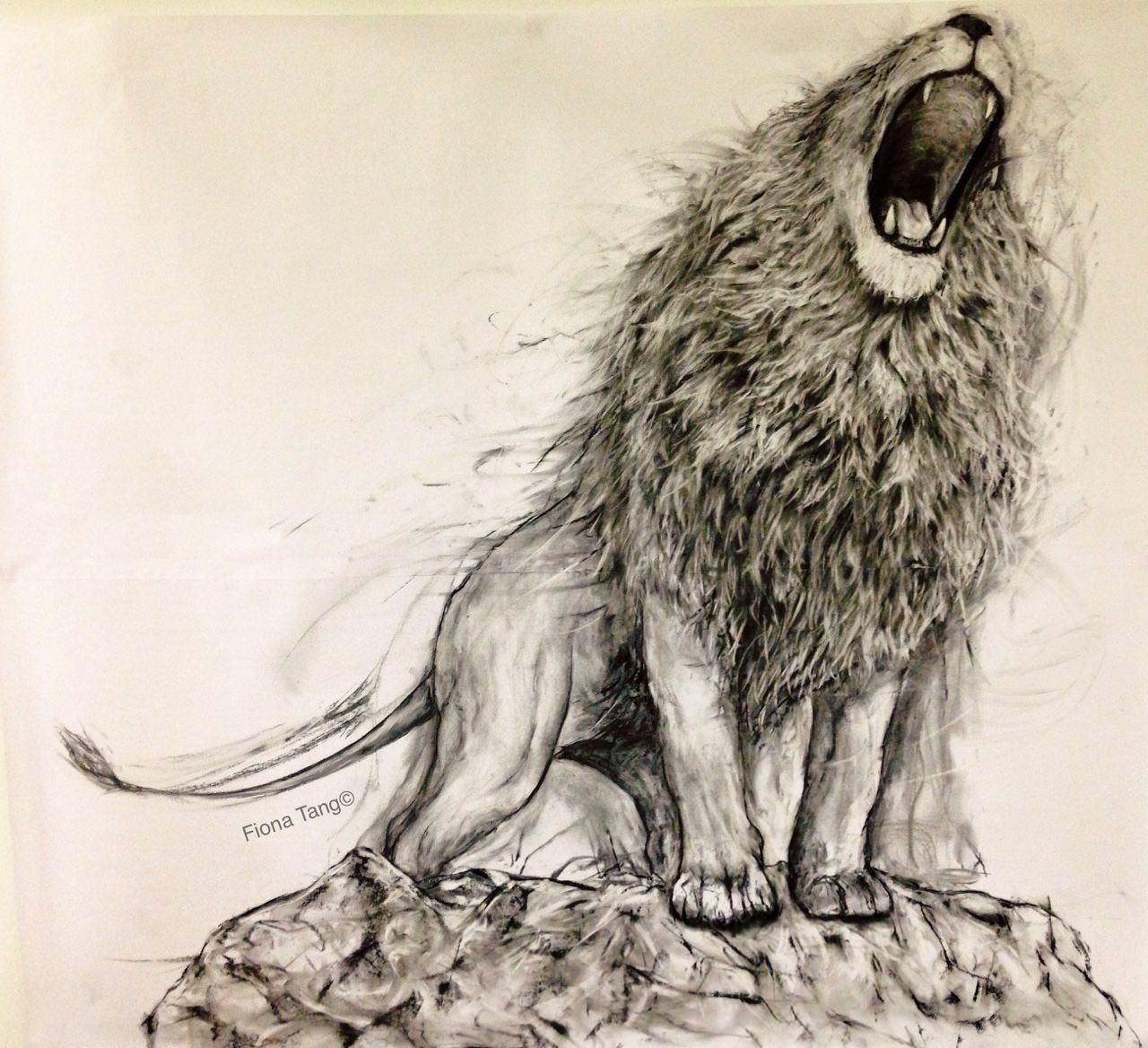 19+ Beautiful Collection of Charcoal Drawings, Art Ideas ...