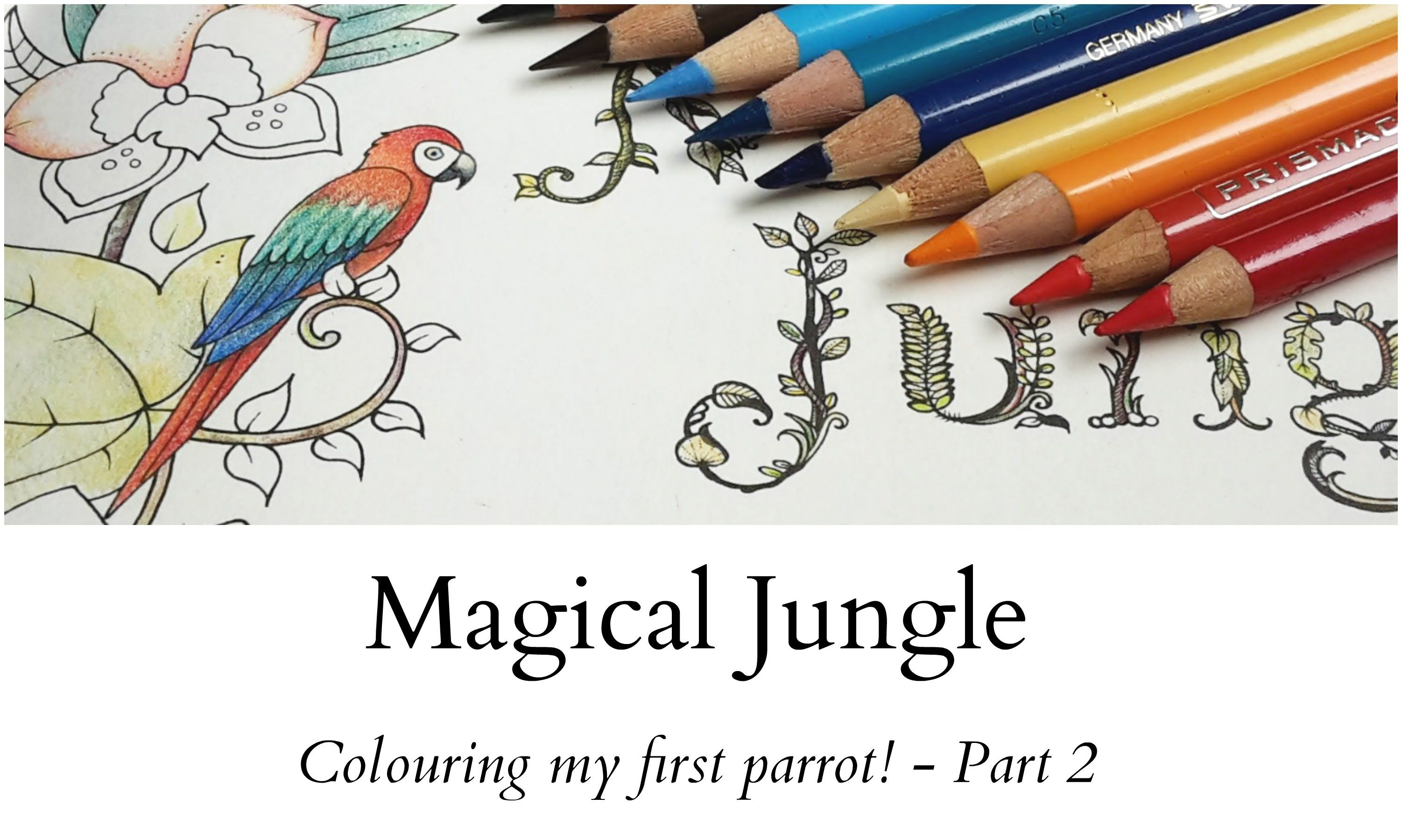 Generous Physiology Coloring Book Small Doodle Coloring Book Square Alphabet Coloring Book The Big Coloring Book Of S Youthful Paisley Designs Coloring Book BlueWedding Coloring Book Template Magical Jungle   Colouring My First Parrot!   Part 2   Videos ..