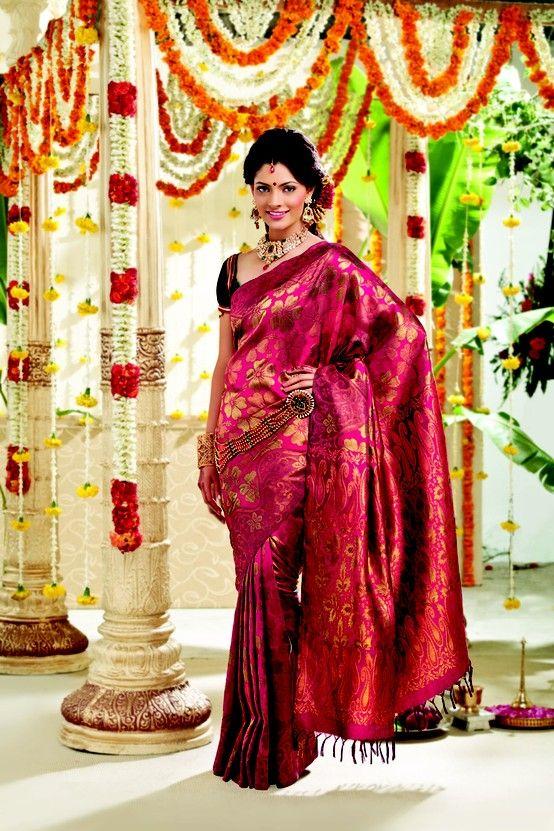 094b7f780239f3 Beautiful Kanjivaram Bridal Silk Saree Collection | silk sari ...