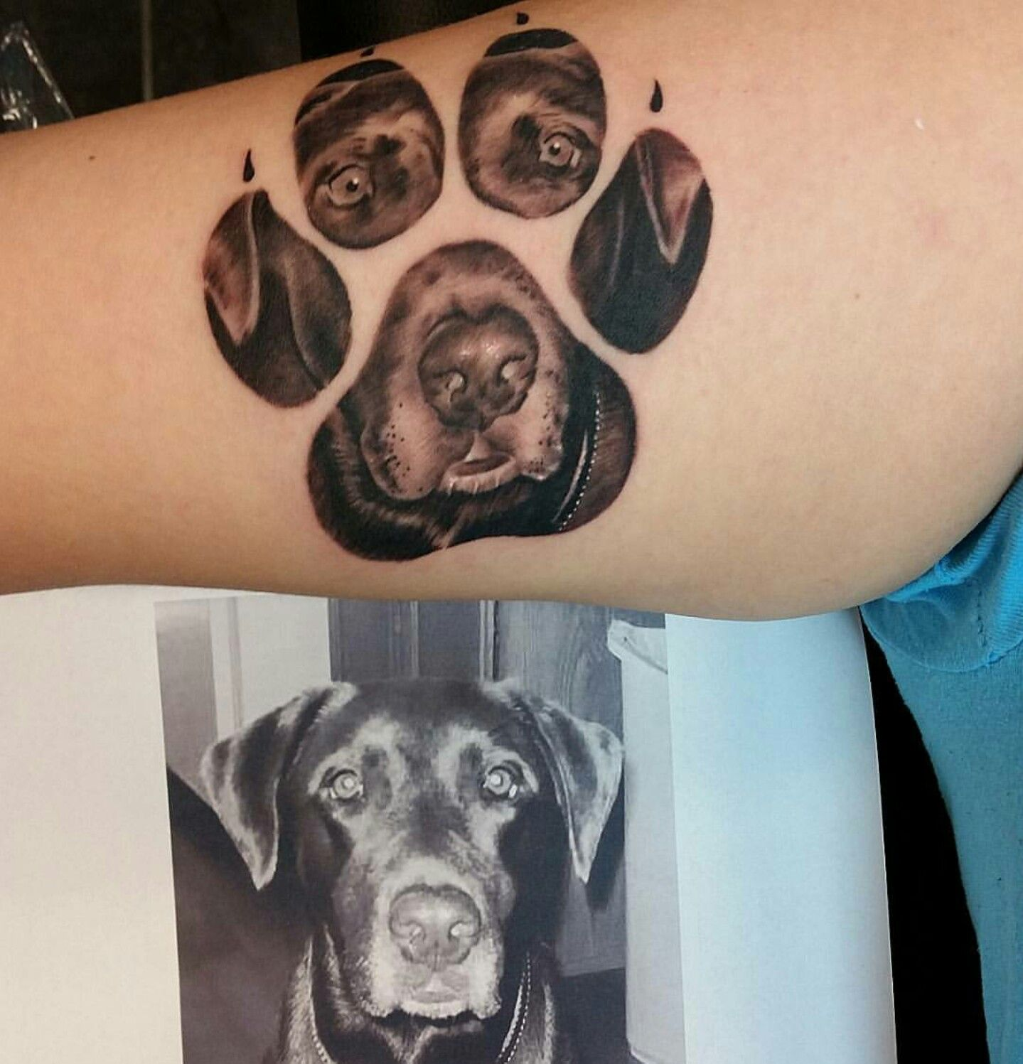 Paw Print Portrait Tattoo Dog Tattoos Pawprint Tattoo Print