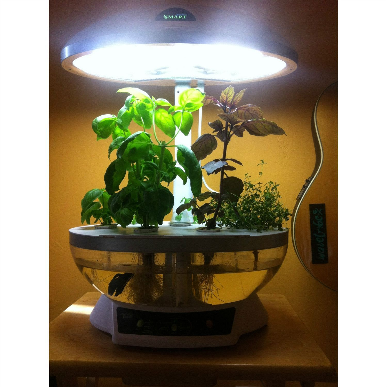 Tabletop Hydroponics Fish Tank Planter Aquaponics System With Grow Light Indoor Aquaponics Aquaponics Aquaponics Fish