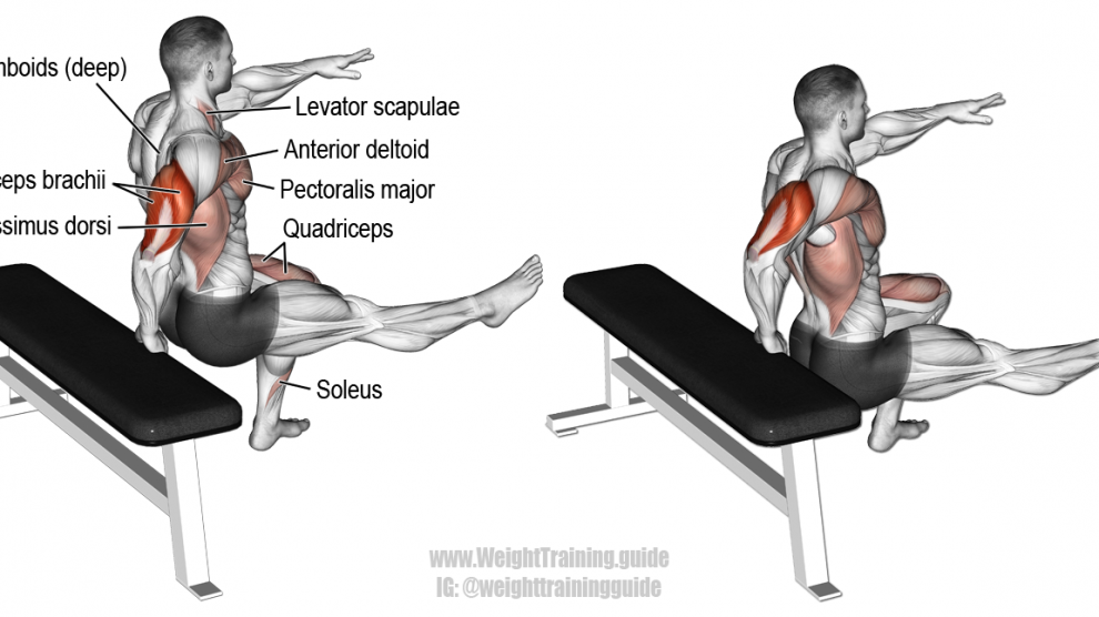 Cool One Arm Bench Dip Exercise Instructions And Video Trening Pdpeps Interior Chair Design Pdpepsorg