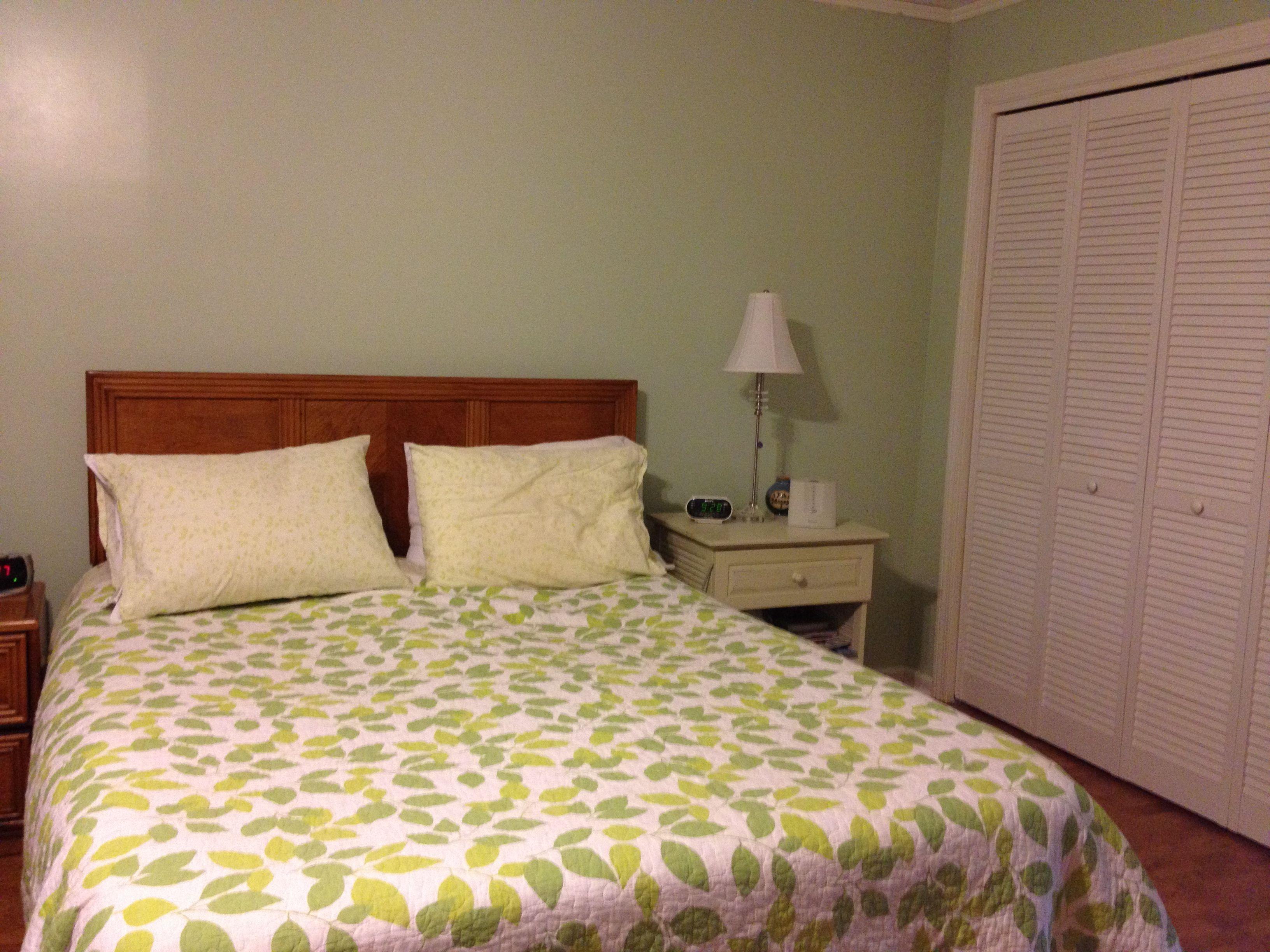 nice clean green for bedroom walls