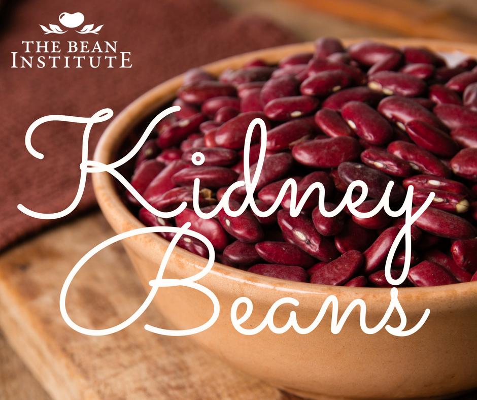 Bean Bios Dark Red Kidney Beans Are Large Kidney Shaped Beans