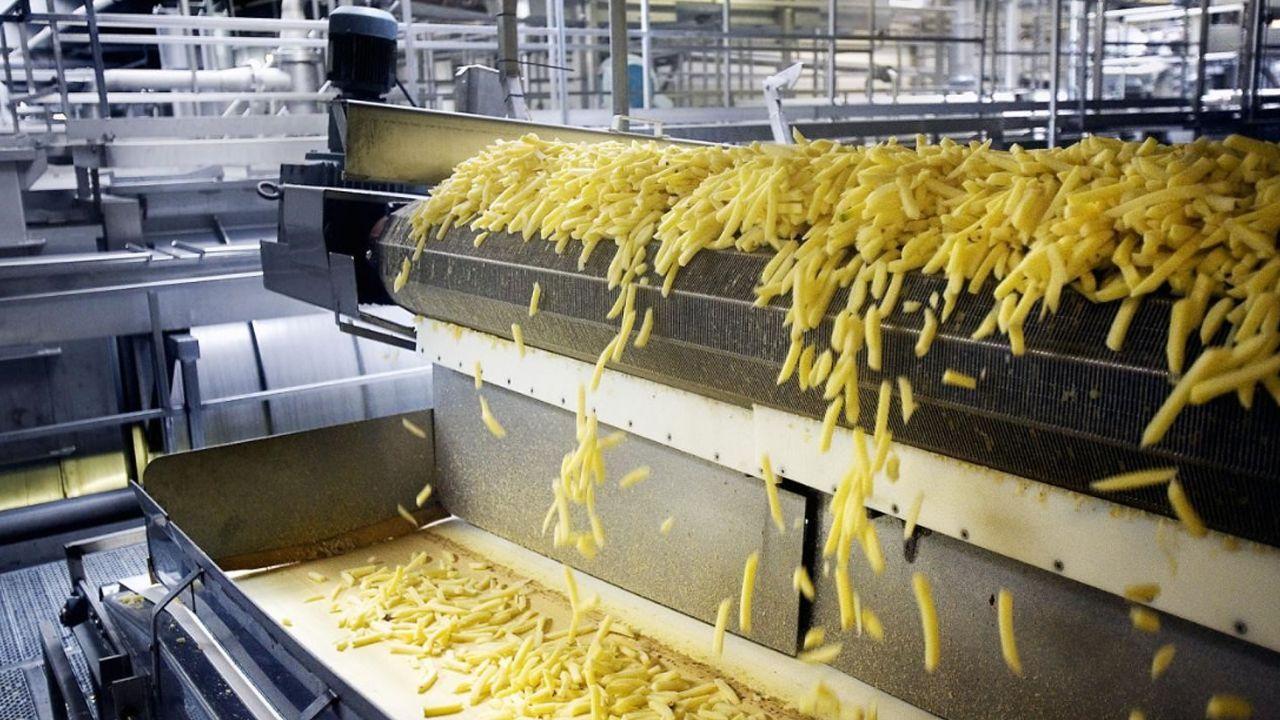مشروع مصنع بطاطس نصف مقلية 2020 Food Grains China