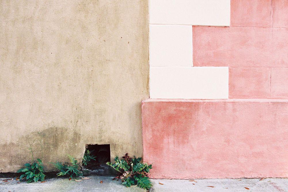 Pink Wall Charleston Sc Charleston Charleston Photographers Pink Walls