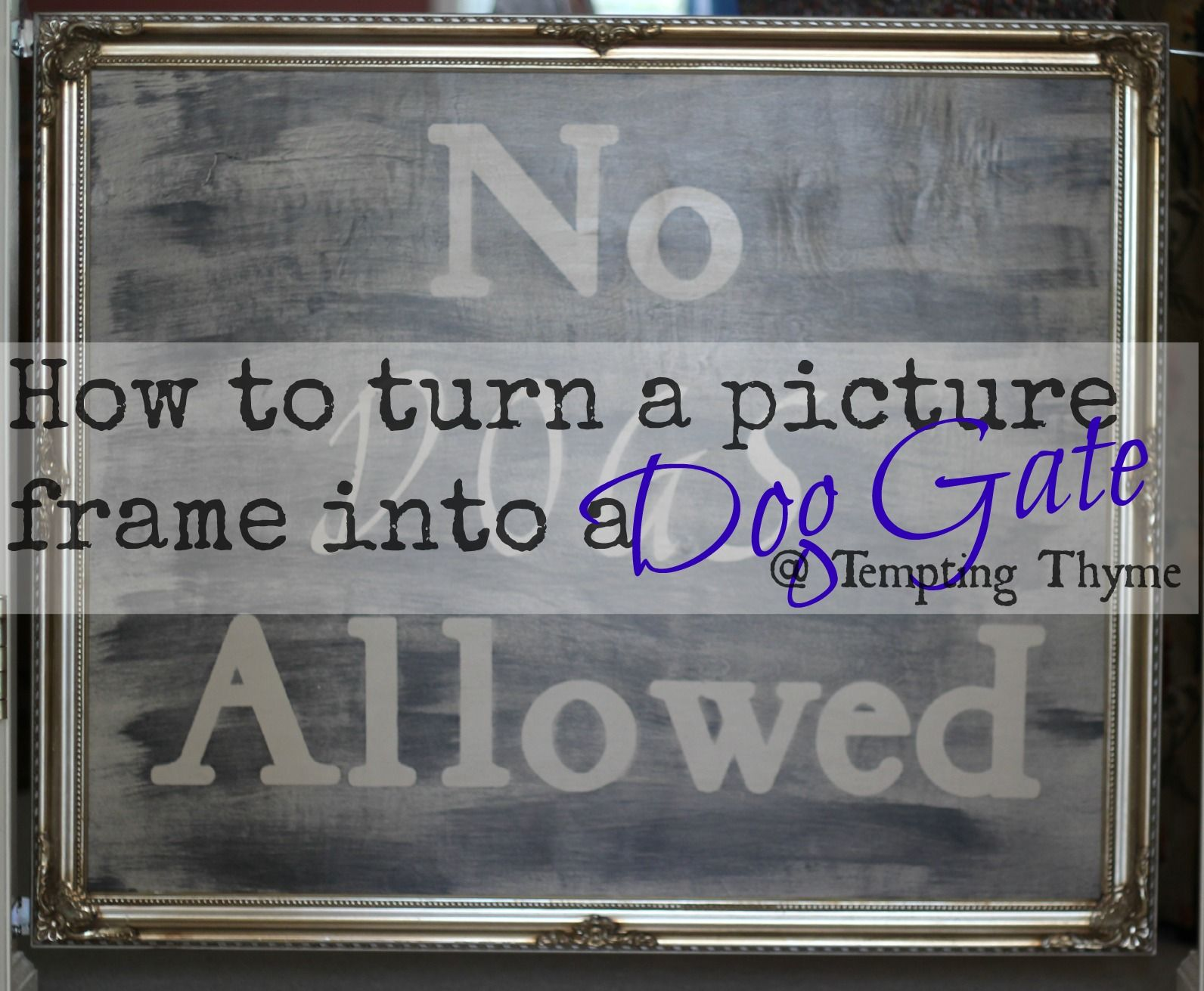Adorable Diy Dog Gate To Keep Your Furry Little Friend