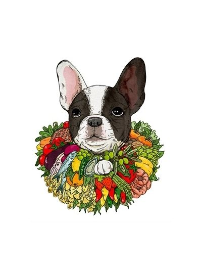 Food Events September Illustrators Illustration Bulldog