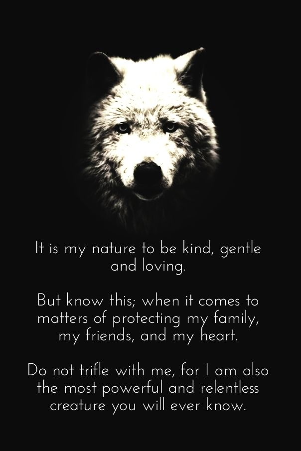 When It Comes To Matters Of Protecting My Family My Friends And My Heart I Am Also The Most Powerful And Relentless Creauture You Will Ever Know