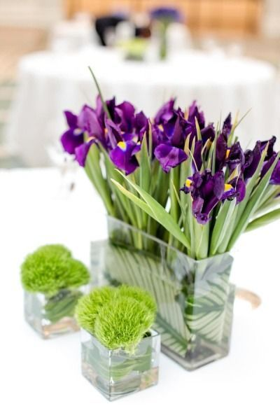 Purple Iris Lined Up Nicely With Two Little Grottos Of Green Trick Love This Simple Contemporary Lo Peach Wedding Flowers Simple Wedding Flowers Iris Flowers