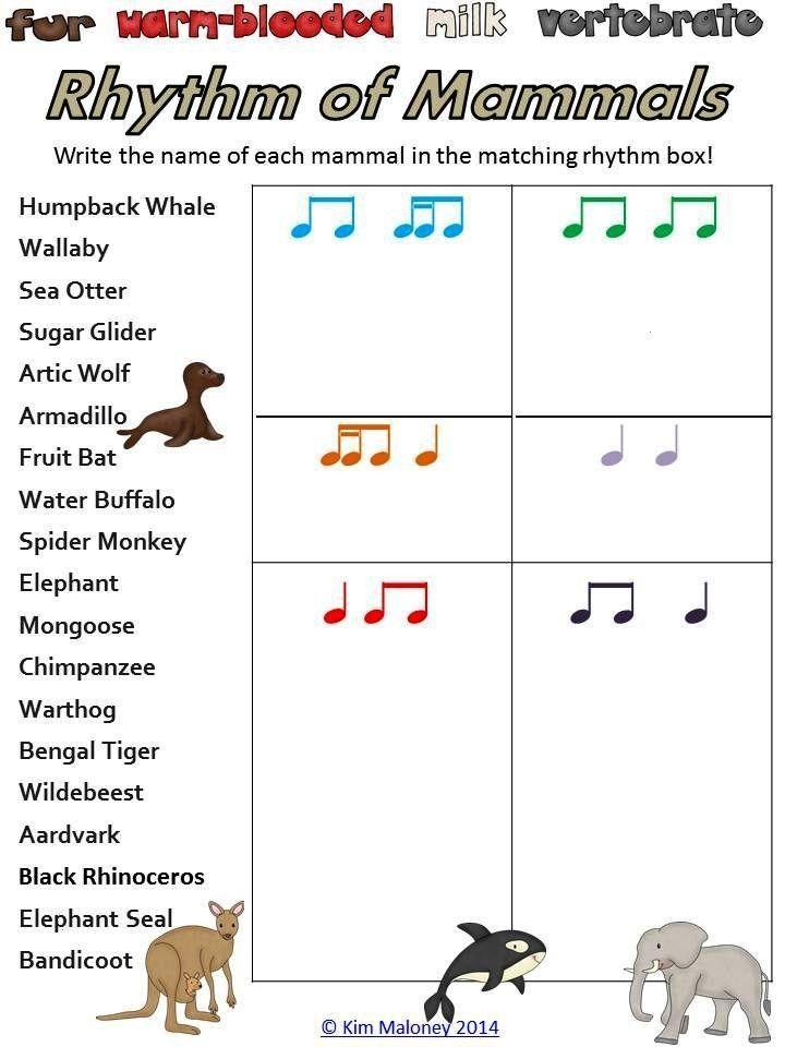 Bundle of FOUR sets of Rhythm Worksheets,  RHYTHM: Bundle of FOUR sets of Rhythm Worksheets, RHYTHM
