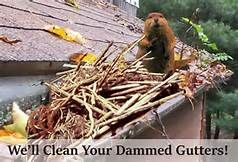 Pin On Gutter Cleaning