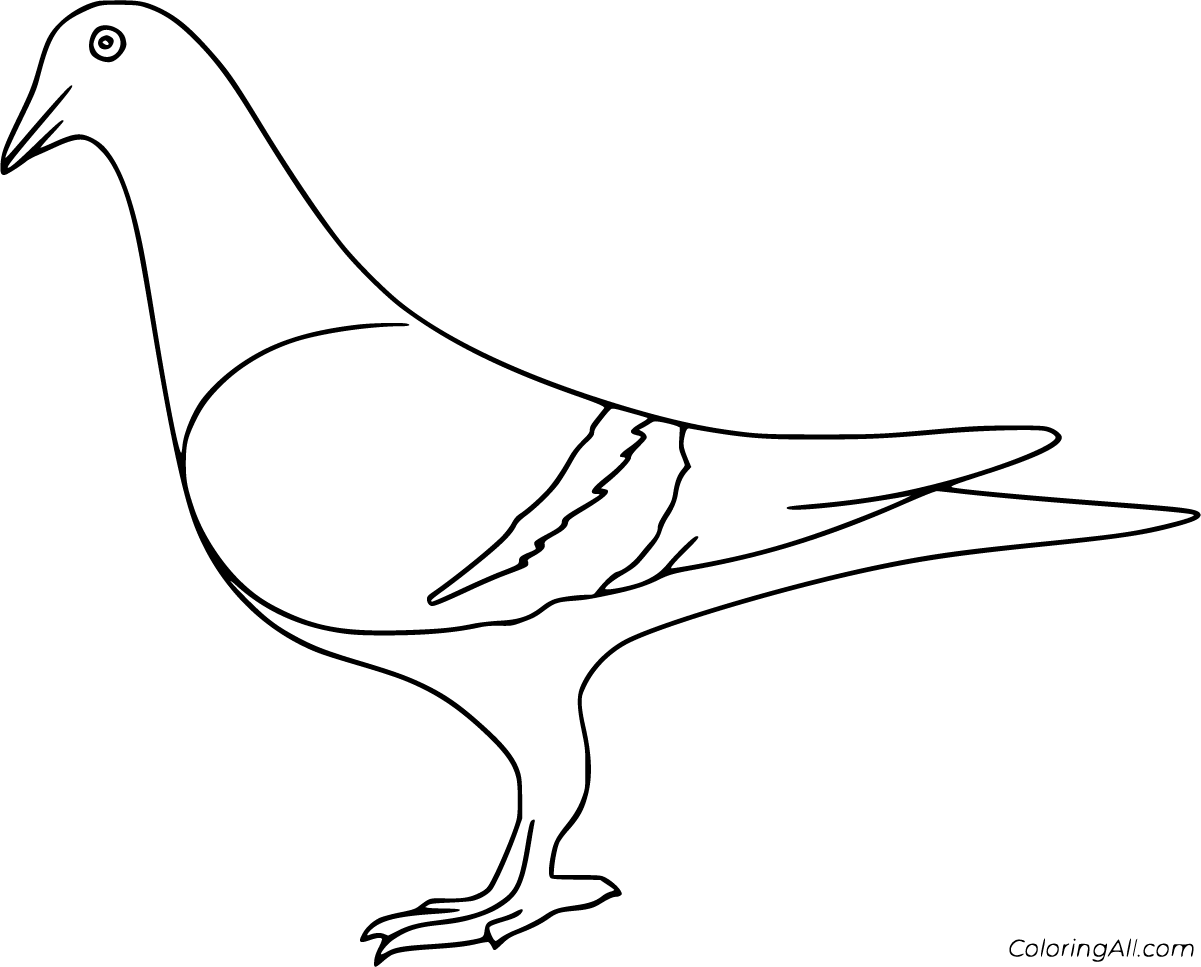 18 Free Printable Pigeon Coloring Pages In Vector Format Easy To Print From Any Device And Automatical Coloring Pages Bird Coloring Pages Printables Free Kids