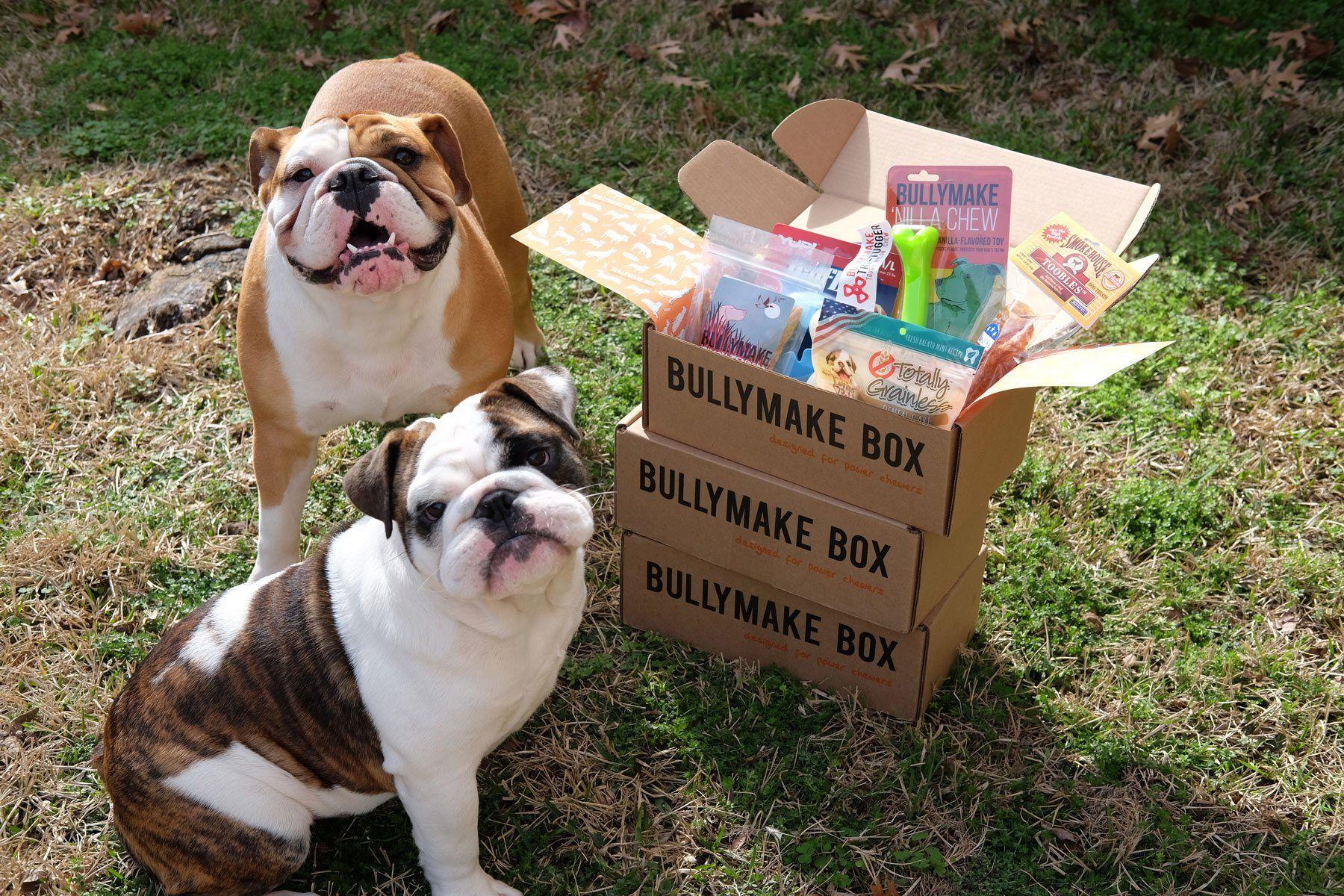 PetGiftBox Subscription Box For Your Fur Babies