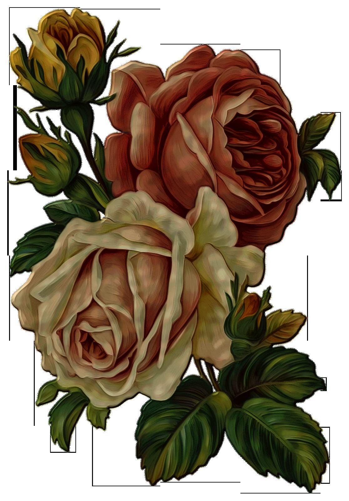 Vintage Flower Png Transparent Http Iezombie Net Vintage Flower Png Transparent Vintage Flowers Flower Art Flowers