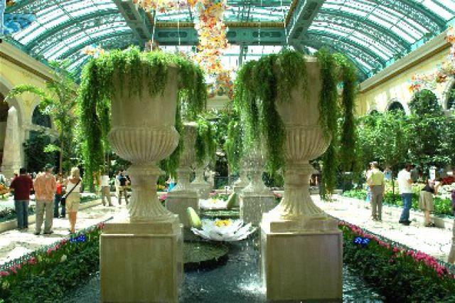 fc1f25e7f7ceb5c999b2b5a1555d0e97 - Bellagio Conservatory & Botanical Gardens Las Vegas