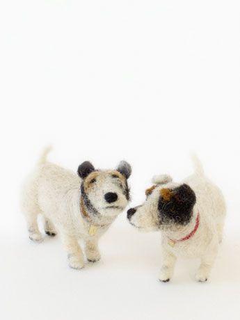 Domenica More Gordon | Dog Shows | Tokyo 2010