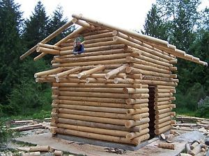Log house or cabin building class school oct 10 butt and for Butt and pass log homes