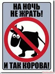 Kartinki Po Zaprosu Smeshnye Motivatory Dlya Pohudeniya Psihomotiv