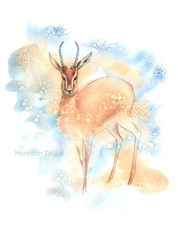 754b21301578c Watercolor Gazelle Print of Original 8x10 by MeredithTalian nursery ...