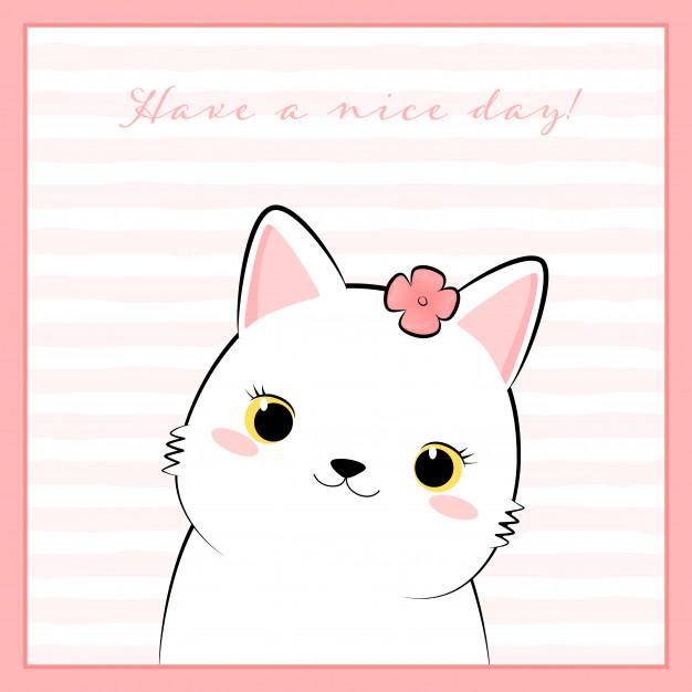 Cute White Cat Kitten Cartoon Doodle In Pink Frame ในปี 2020