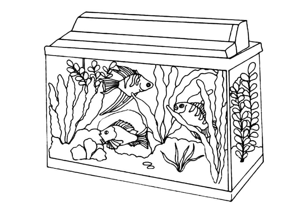 Aquarium Coloring Pages - Best Coloring Pages For Kids in ...