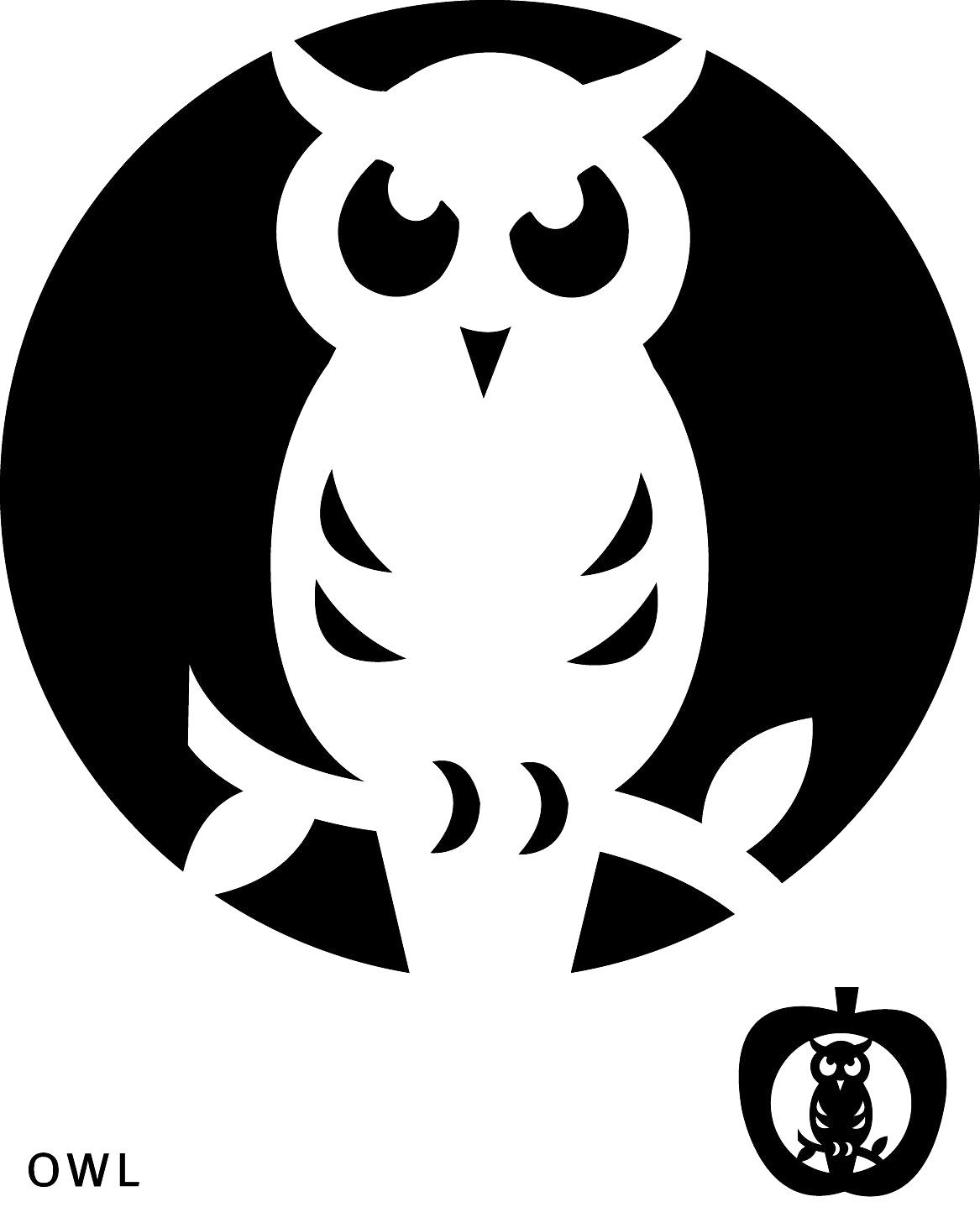 graphic relating to Owl Pumpkin Stencil Printable referred to as Easiest Visuals Of Adorable Owl Pumpkin Carving Template Printable