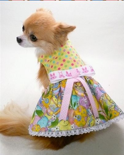 Little Honey Happy Bumble Bee Dog Hoodie Chihuahua Clothes Dog
