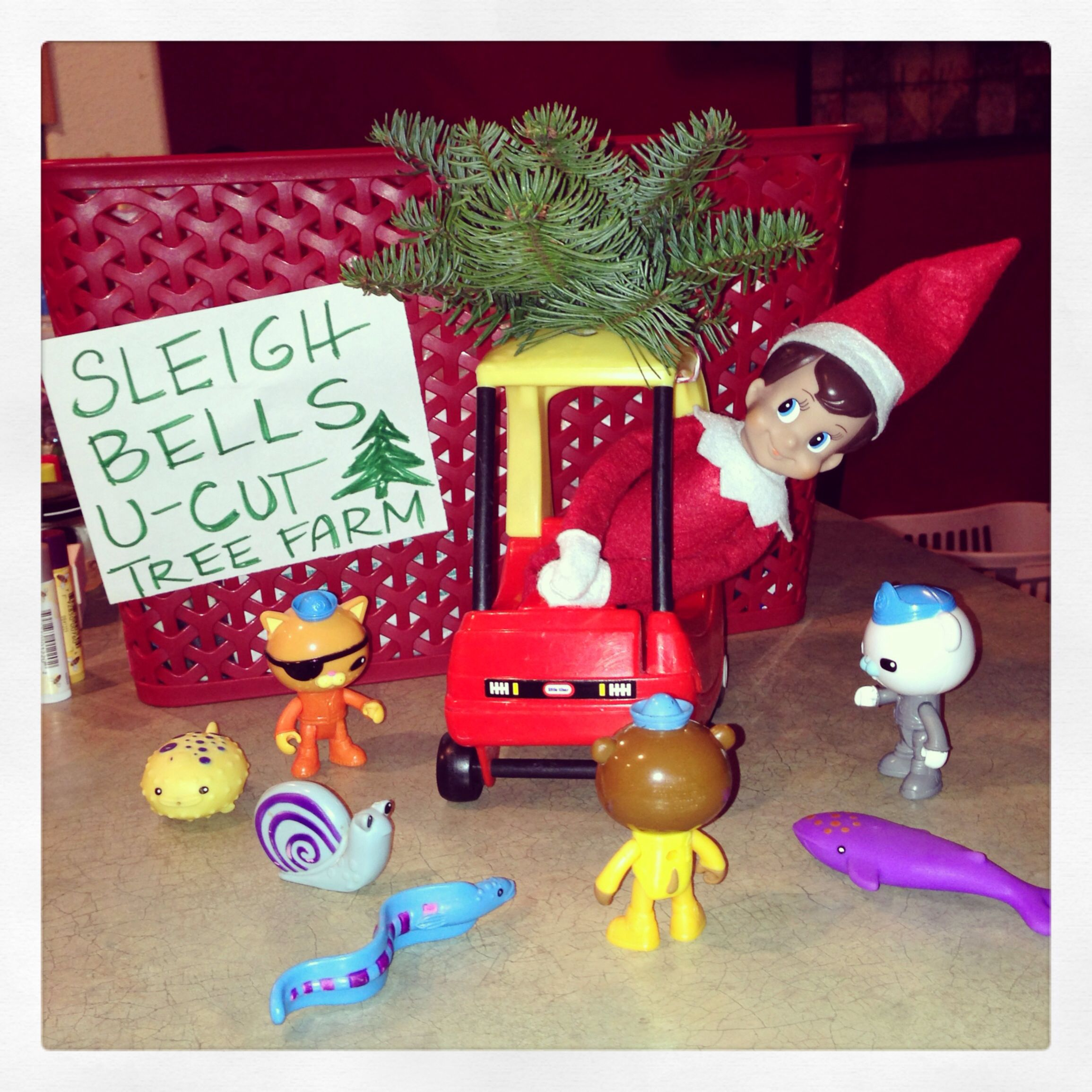 Elf on the Shelf - Chippey helps the Octonauts get a Christmas tree ...