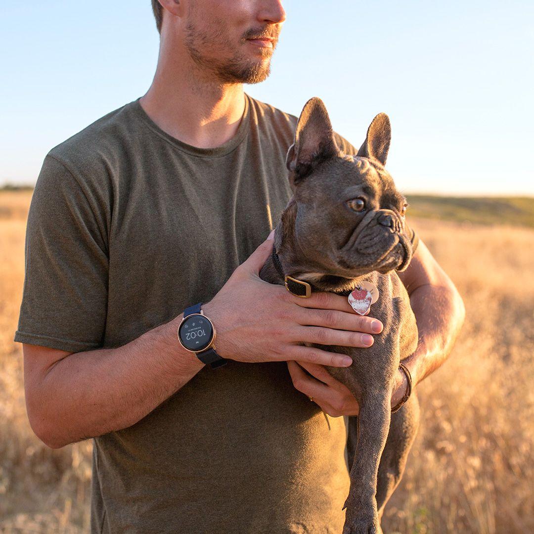 Misfit Vapor Puppy Fitness Tracker Wearable Puppies Bulldog