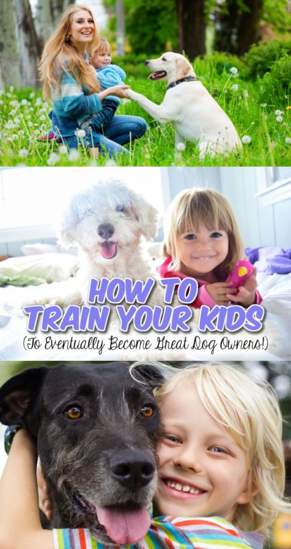 How To Train Your Kids To Eventually Become Great Dog Owners Best Pets For Kids Low Maintenance Pets Dog Owners