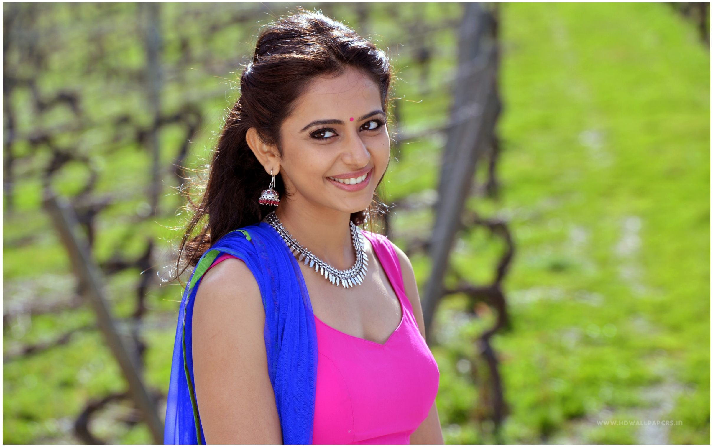 hindi actress rakul preet full hd wallpapers | wallpapers