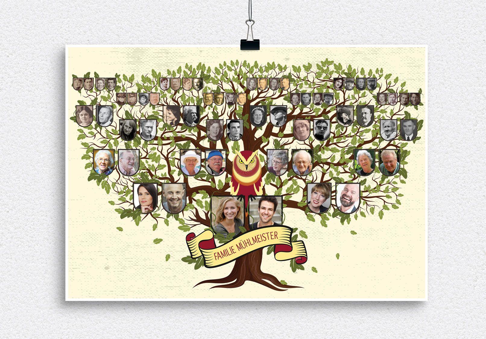 Familienstammbaum Erstellen Vorlagen Herunterladen Und Anpassen Stammbaum Stammbaum Vorlage Familienstammbaum Erstellen