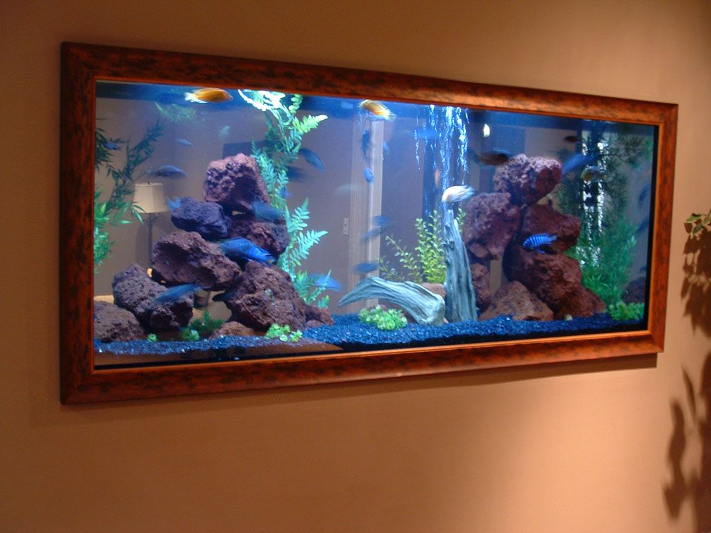 Beautiful Aquarium Decorations Ideas With Wall Design Fish Tank Decorations  For Wall Decorating Ideas With Wooden Aquarium Frame Part 34