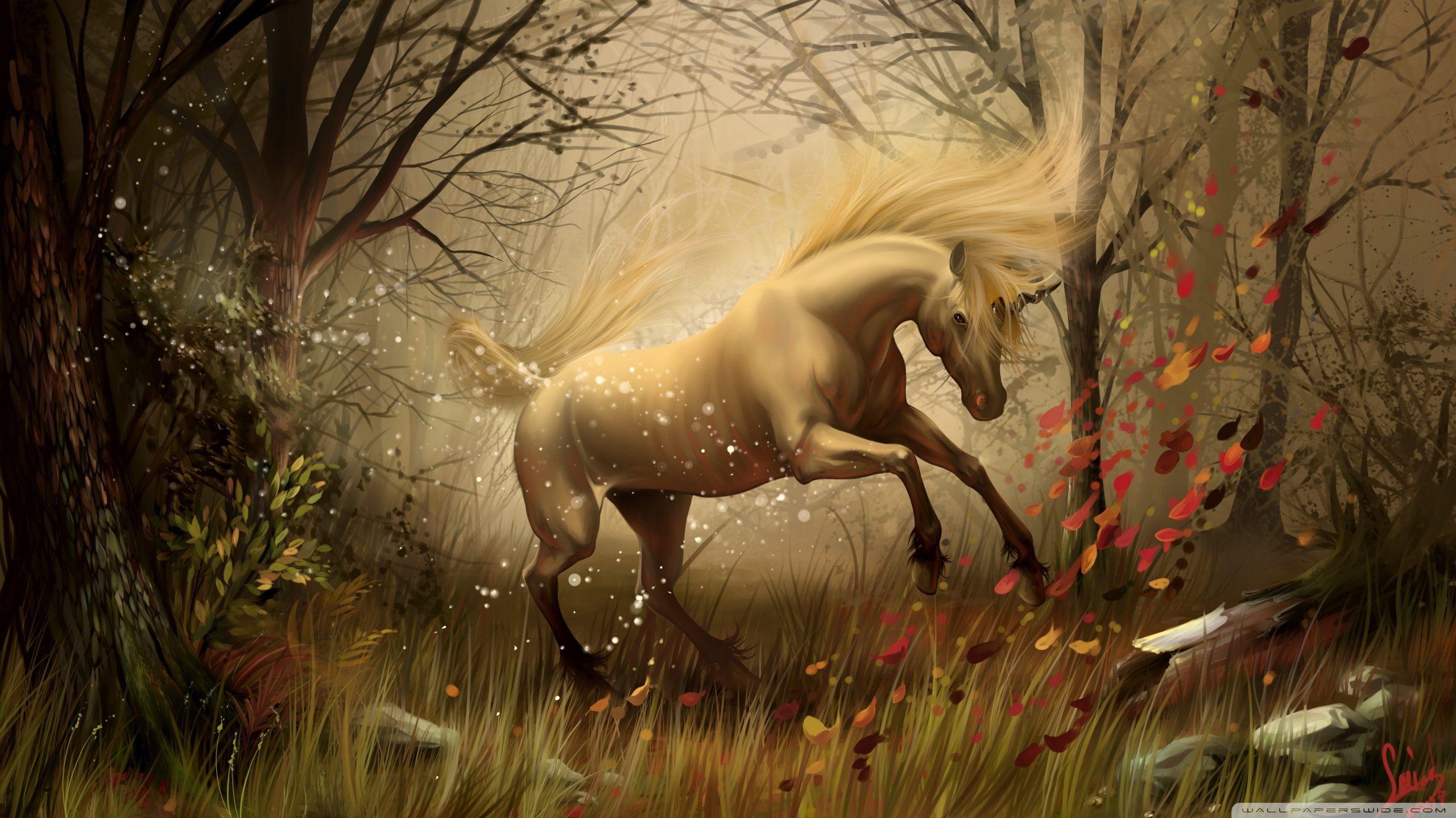 Best Wallpaper Horse Fairy - fc26696cfd31b3f74f472bd787dc76fb  HD_363626.jpg