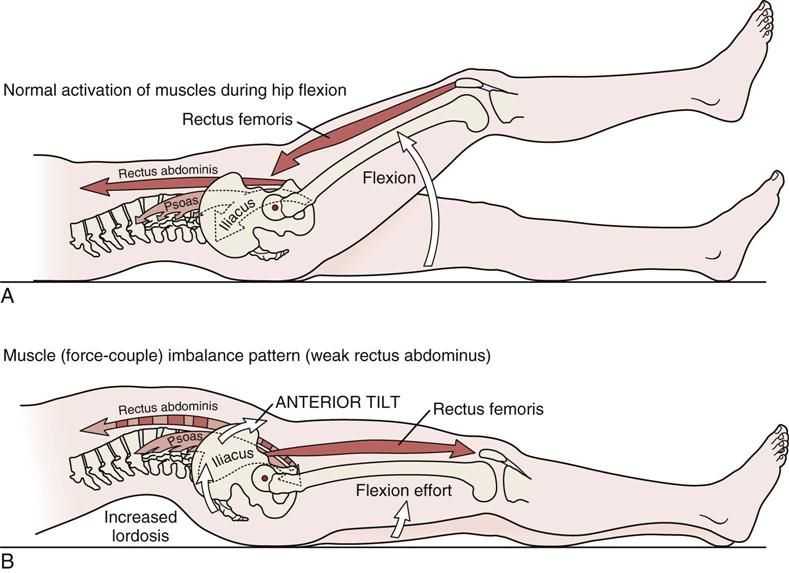 Pin By On Anatomy Pinterest