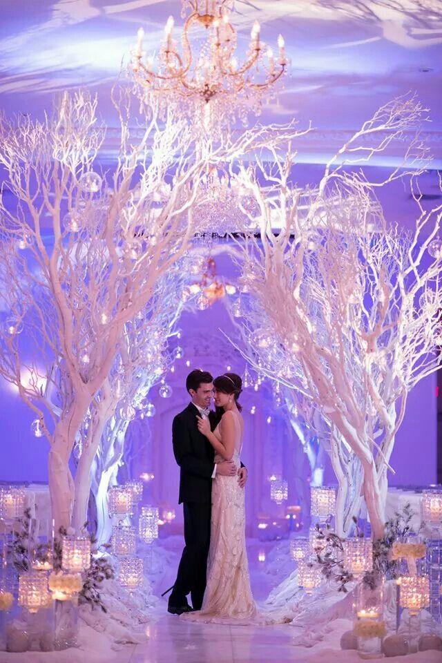 Winter wonderland  Winter wonderland wedding theme, Wonderland