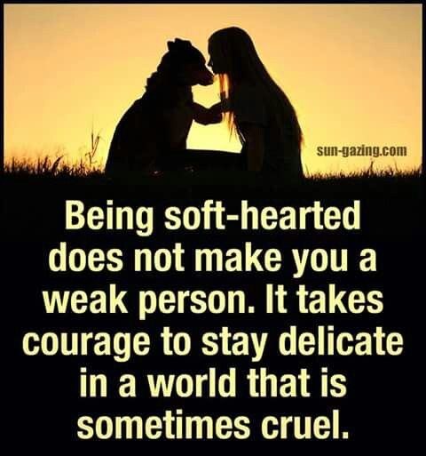 soft hearted person quotes