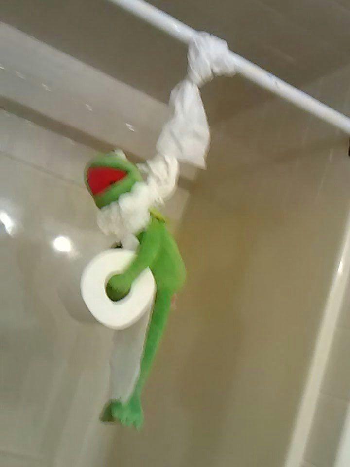 Kermit Frog Meme Template