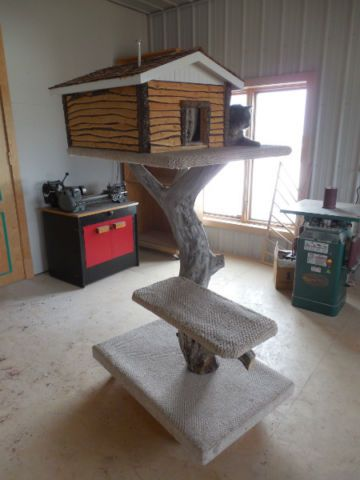 One Of A Kind Cat Tree Stand Accessories Calgary Kijiji Tree Stand Accessories Kijiji Tree Stand