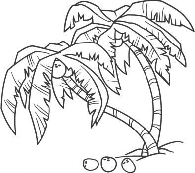 Palm Tree Coloring Pages  coconutpalmcoloringpagejpg